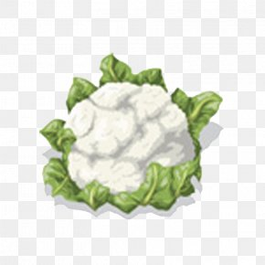 Broccoli - Cauliflower Vegetable Clip Art PNG
