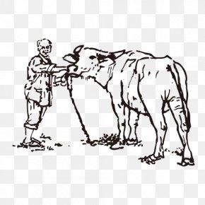 Artwork Farm - Highland Cattle PNG