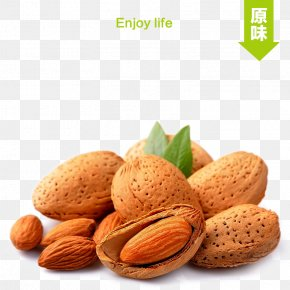 Almond Taobao Main Map - Almond Stuffing Nut Apricot Kernel PNG