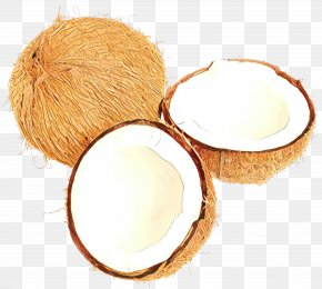 Coconut Water Coconut - Coconut PNG