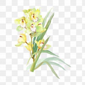Watercolor Flowers - Flower Watercolor Painting Drawing PNG