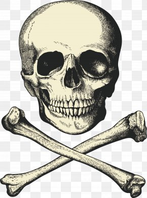 Skeleton Vector - Captain Hook Piracy Buried Treasure Ship PNG