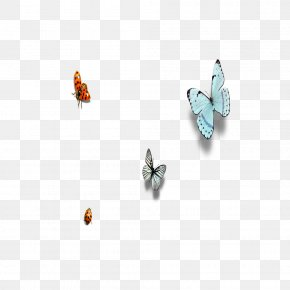 Butterfly Insect - Butterfly Insect Ladybird Euclidean Vector PNG