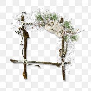 Heracleum Plant Christmas Decoration - Christmas Decoration Cartoon PNG