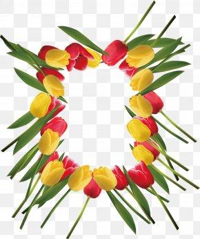 Tulips Vector - Tulip Euclidean Vector Floral Design Flower PNG