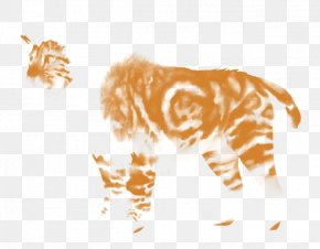 Tiger - Tiger Lion Giraffe Felidae Whiskers PNG