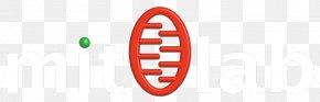Letter Logo - Logo Brand Trademark PNG
