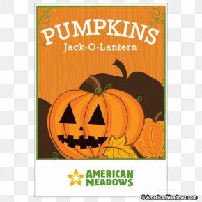 Jack-o-lantern - Jack-o'-lantern Halloween Dough Candy Cookie Cutter PNG