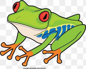 Good Frog Cliparts - Red-eyed Tree Frog Australian Green Tree Frog Clip Art PNG