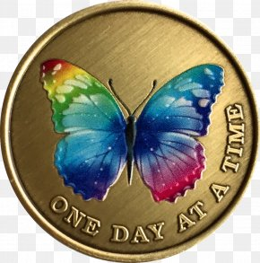 Butterfly - Nymphalidae Butterfly Sobriety Coin Rainbow Serenity Prayer PNG