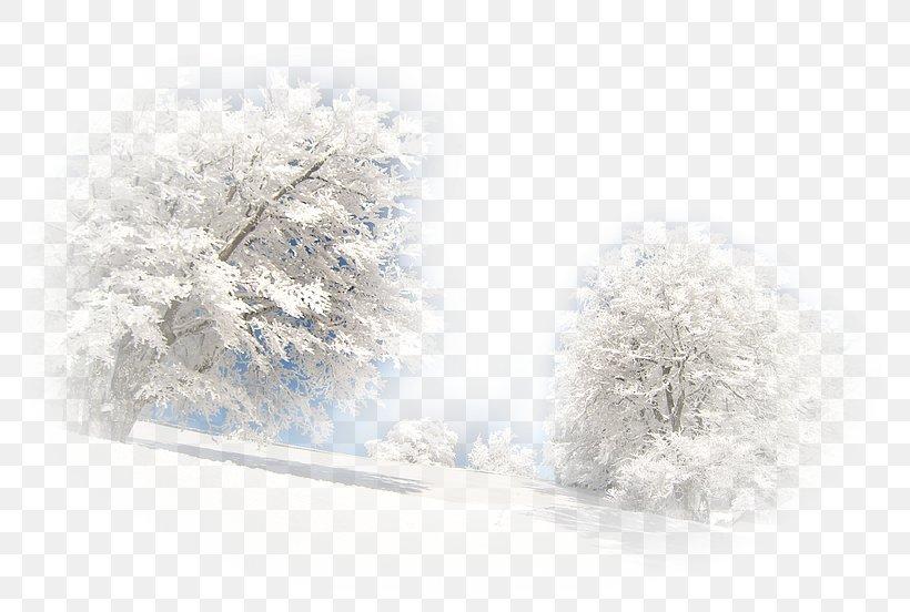 Landscape Winter Paysage Dhiver Desktop Wallpaper Png