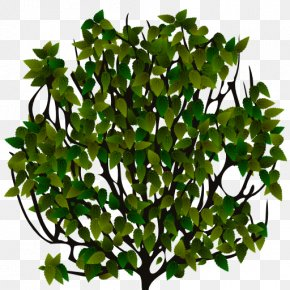 Bushes Top View - Sprite Shrub 2D Computer Graphics Tree PNG
