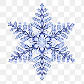 Euclidean Vector Pattern - Snowflake Physicist Desktop Wallpaper PNG
