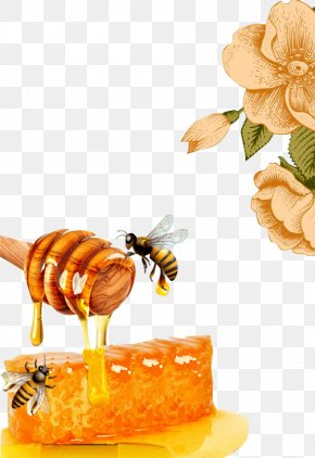Honey Bees - Honey Bee Honeycomb Beeswax PNG