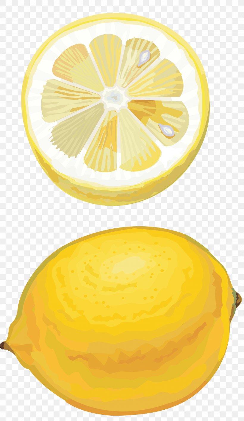 Lemon Citron Orange Citric Acid Lime, PNG, 2439x4200px, Lemon, Auglis, Citric Acid, Citron, Citrus Download Free