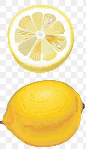 Lemon - Lemon Citron Orange Citric Acid Lime PNG