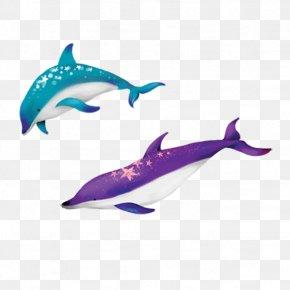 Dolphin - Dolphin Cartoon Illustration PNG