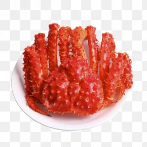 King Crab Creative Dig Free - King Crab Seafood Crab Trap PNG