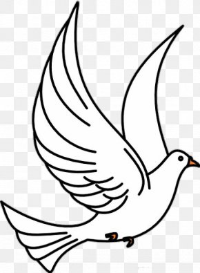 Burung Dove - Christian Clip Art Pigeons And Doves Vector Graphics Openclipart PNG