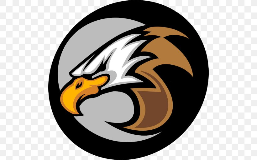 Logo Vector Graphics Stock Photography Illustration Eagle Png 512x512px Logo Accipitriformes Bald Eagle Bird Bird Of