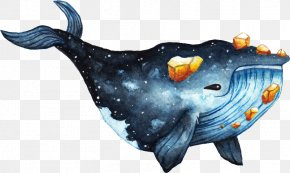 Painting - Watercolor Painting Drawing Cetacea Speed Painting PNG
