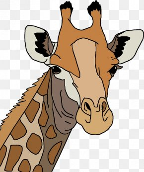 Giraffe Avatar - Northern Giraffe Leopard Giraffe Family T-shirt Drawing PNG
