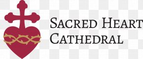 School - Cathedral Of The Most Sacred Heart Of Jesus Roman Catholic Diocese Of Knoxville Sacred Heart Cathedral School Education PNG
