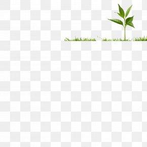 Soil Profile - Leaf Grasses Plant Stem PNG