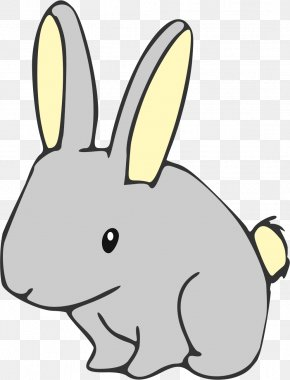 Easter Rabbit - Rabbit Easter Bunny Color Clip Art PNG