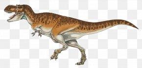 Vector Dinosaurs - Tyrannosaurus Tyrannotitan Velociraptor Dinosaur PNG