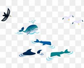 Color Vector Cartoon Whale Bird Seagull - Gulls Bird Cartoon PNG