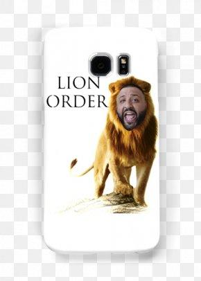 Lion - Lion Animal Tiger Sin Pin PNG
