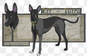 Egyptian Pharaoh - Italian Greyhound Pharaoh Hound Dog Breed Whippet PNG
