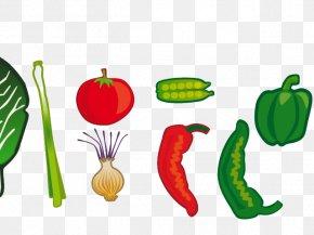 Vegetables Cartoon Hand Drawn - Vegetarian Cuisine Vegetable Clip Art Fruit PNG