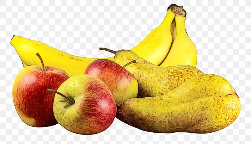Tree Of Life, PNG, 1880x1077px, Food, Accessory Fruit, Apple, Banana, Banana Family Download Free