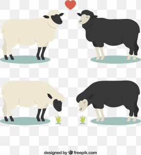 Two Pairs Of Black And White Sheep Vector Material Downloaded, - Sheep Euclidean Vector PNG