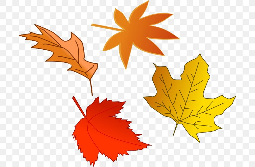 Autumn Leaf Color Clip Art, PNG, 700x538px, Red Leaf Yellow