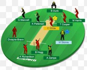 Cricket - India National Cricket Team ICC Under-19 Cricket World Cup Pakistan National Cricket Team New Zealand National Cricket Team Sri Lanka National Cricket Team PNG