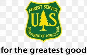 Forest - Rogue River–Siskiyou National Forest United States Forest Service United States National Forest Forestry Cascade Range PNG