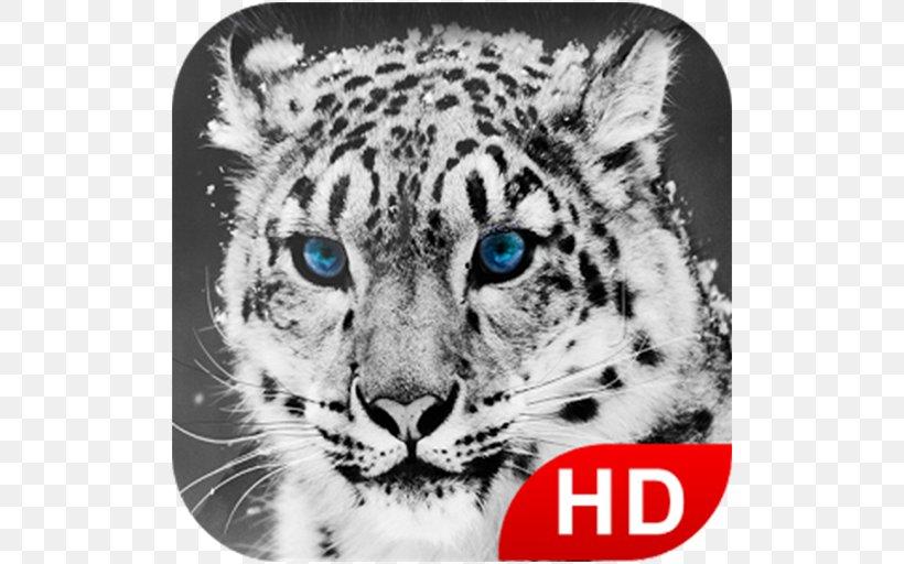 Snow Leopard Tiger Desktop Wallpaper Big Cat, PNG, 512x512px, Leopard, Animal, Big Cat, Big Cats, Black And White Download Free