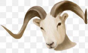 Ram Head - Sheep Ram Trucks Goat Ram Pickup Dodge PNG