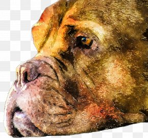 Watercolor Dogs - Dog Breed Boerboel Bullmastiff Lion Watercolor Painting PNG
