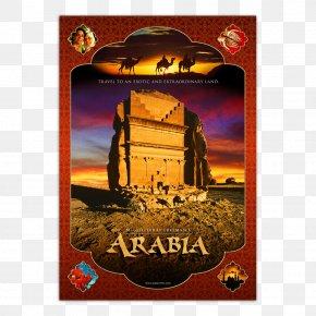 Arabian Sea - Documentary Film MacGillivray Freeman Films Cinema 3D Film PNG