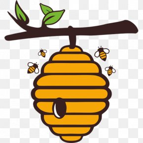 Bee - Western Honey Bee Beehive Royalty-free Euclidean Vector PNG