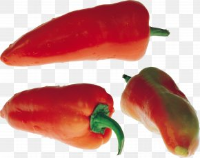 Pepper Image - Bell Pepper Chili Pepper Vegetable PNG