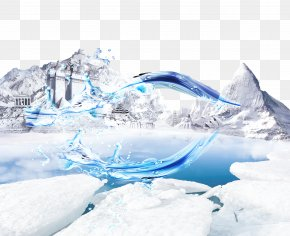 Iceberg - Polar Bear Snow AliExpress Wallpaper PNG