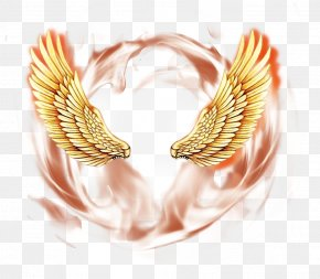 Angel Wings Psd Material Picture PNG