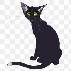 Cat - Cat Warriors Firestar Ravenpaw Erin Hunter PNG