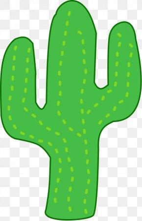 Cactus Vector - Cactaceae Barrel Cactus Free Content Clip Art PNG