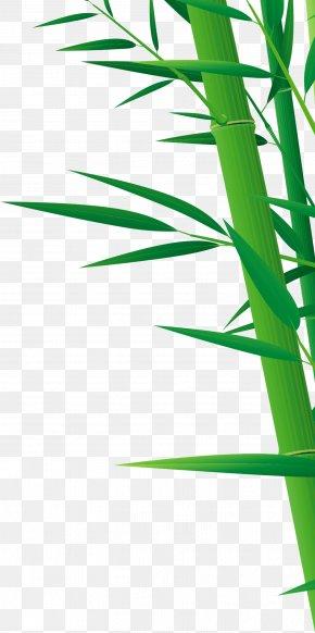 Green Bamboo - Bamboo Drawing PNG